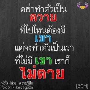 675572-img-1367592318-9