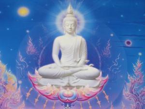 buddha67